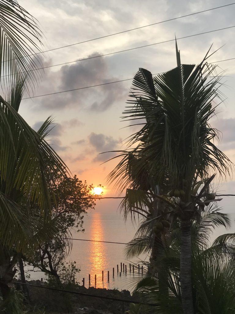 Light orange sunset with palm trees framing it