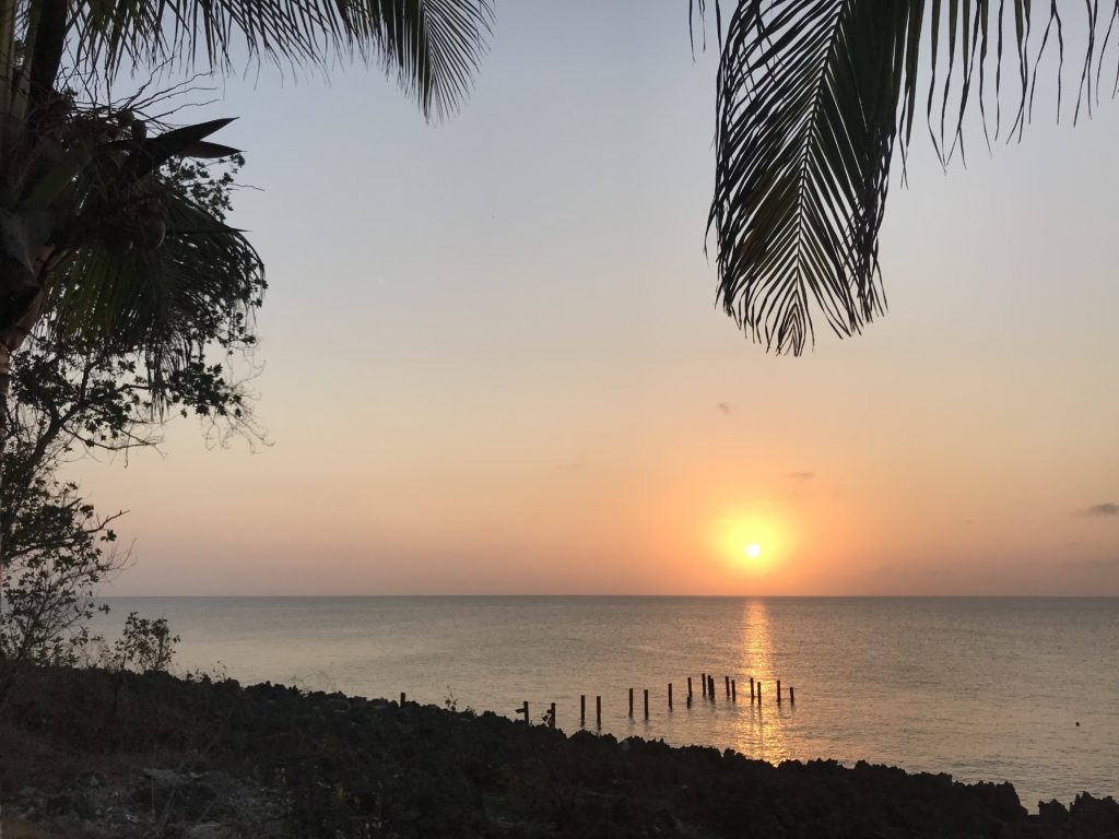 Orange sun low on the ocean with palm trees framing it and posts in the water