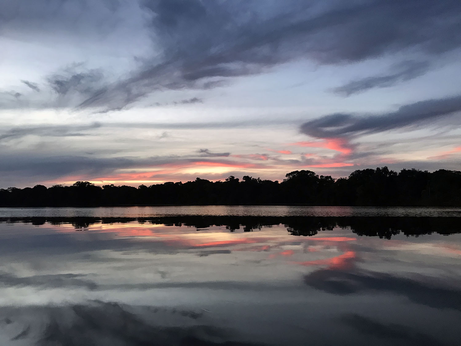 sunset over the lake in the amazon jungle