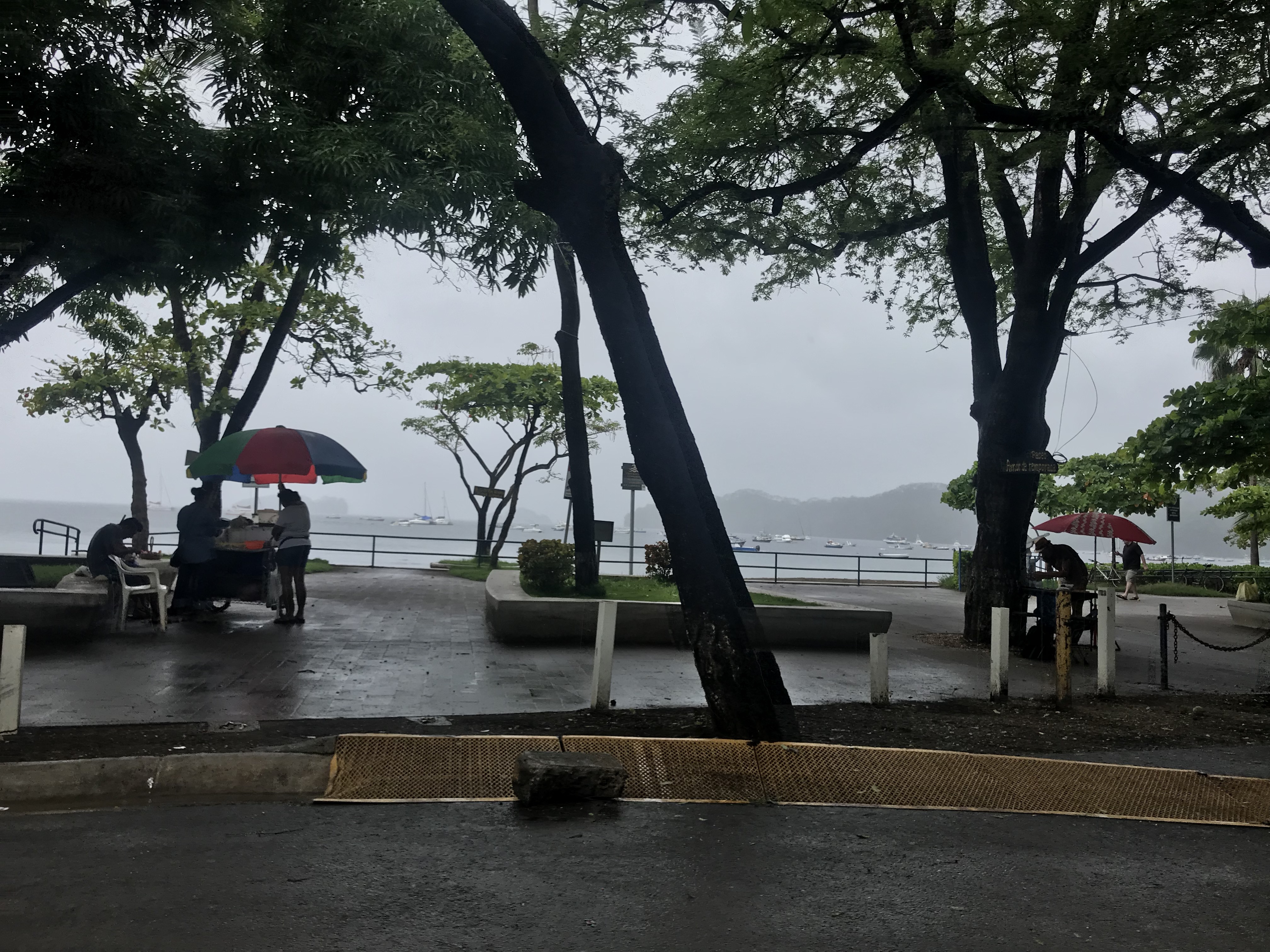Rainy afternoon on a boardwalk in Costa Rica