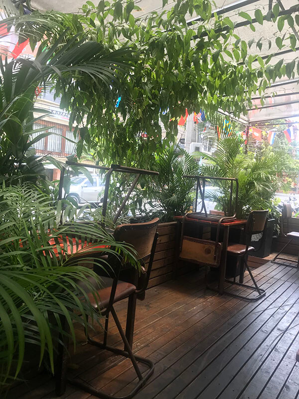 Cool cafe with lots of plants